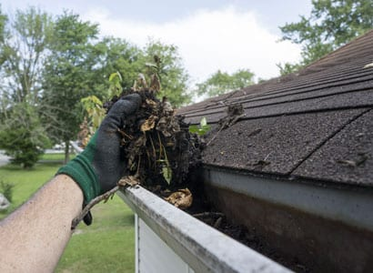 gutter cleaning caseyville illinois
